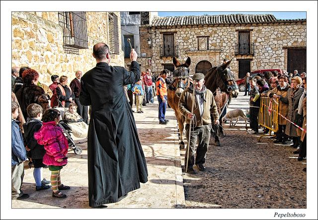 Fiestas de San Antón en El Toboso