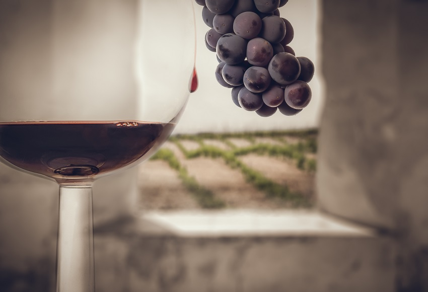 Enoturismo en Toledo- Copa de vino, racimo y vid