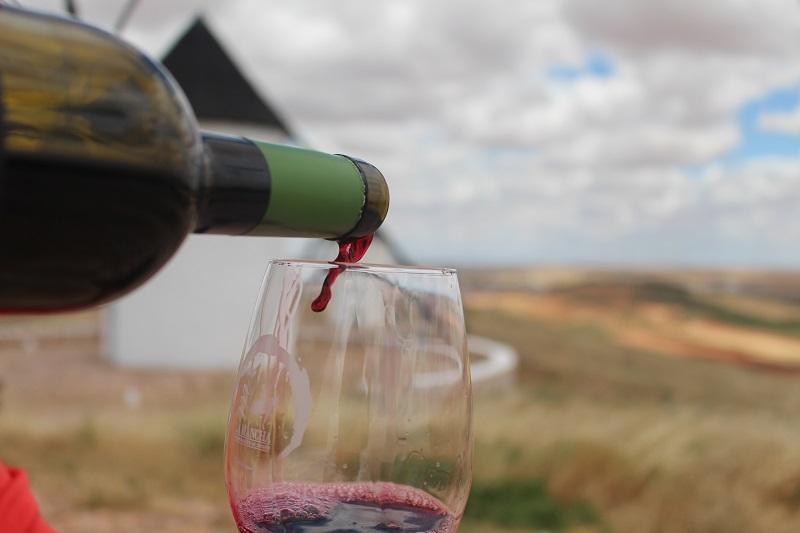 Copa de vino en viñedo